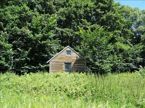 Aukce - pozemek, Lašovky u přehrady Orlík